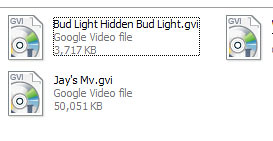 GoogleVideo_004
