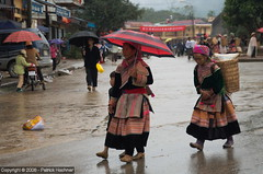 Flower H'mong, Bac Ha (Patosan) Tags: vietnam dao sapa hmong laocai hilltribe bacha cancau