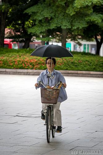 Rower jest wielce ok