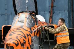Jaguar Servicing (Kevin John Hughes) Tags: tornado jaguar aircraf raf rafcosford timeline timelineevents planes jets gulfwar lights cockpit