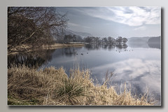 Loch Contrast (Bill McKenzie / bmphoto) Tags: lochard scotland trossachs trees reflections surreal best stirlingshire