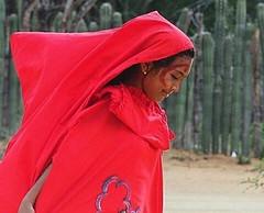 . @Regrann del día para @patoneando - La Guajira, Colombia - Mi concepto de felicidad es cuando te invitan a una ranchería en el norte de Colombia, ves a los indígenas Wayuús bailando su danza tradicional y a las mujeres luciendo sus trajes y atuendos aut (EnMiColombia.com) Tags: foto regrann del día para patoneando la guajira colombia mi concepto de felicidad es cuando te invitan una ranchería en el norte ves los indígenas wayuús bailando su danza tradicional y las mujeres luciendo sus trajes atuendos autóctonos patoneandoporcolombia chichamaya wayuu wayuus