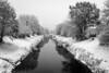 Spieglein, Spieglein, ... (beni_rupp) Tags: 2 52wochen fluss rems schnee wasser schwarzweis winter spiegelung