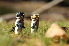 Foreign Fields (lego slayer) Tags: eu purge lego legos outdoors grass rock white black brickarms