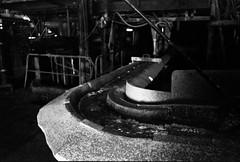 1982 (The Dent.) Tags: kodakhawkeyesurveillancefilm nikon f3 28m tmaxdeveloper 14 6 mins 25c