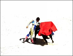 pase de pecho (aficion2012) Tags: arles france francia novillada feria riz septembre 2016 corrida toros toreaux bull bullfight flight leo valadez blohorn jalabert novillo novillos
