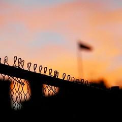 Fences on Pennsylvania Ave #instadc #DC via #activetransportation