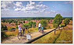 Der Blick vom Wilseder Berg (Don111 Spangemacher) Tags: landschaft lüneburgerheide farbenfroh niedersachsen natur naturschutzgebiet naturpark niederhaverbeck wolken wilsede heide himmel heidekreis heideblüte hochsommer