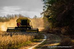 Winter Harvest (T i s d a l e) Tags: tisdale winterharvest soybeans farmequipment winter january2017 easternnc