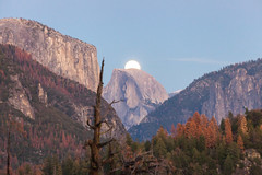 The super moon is rising in Yosemite Valley (Daniel Vicario) Tags: california unitedstates us