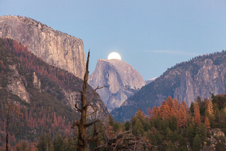 The super moon is rising in Yosemite Valley