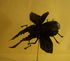 Cyclommatus Metallifer (Marcos Origami) Tags: bugs origami beetle