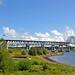 DGJ_8532 - Miramichi Bridge