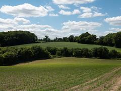 White Heath Farm
