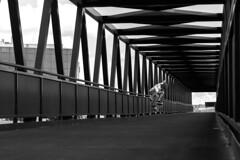 COCO (GonzaloAlcolea1) Tags: bridge blackandwhite canon puente sevilla ollie coco skate skateboard gines 600d bormujos