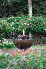 Jardin botánico 5 (1 de 1) (pilatestotalfitness) Tags: flores canon agua colombia bogotá fuente jardínbotánico rebelt3
