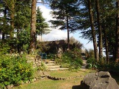 Quiet Garden view