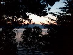 Summer Sunset (nazmije.d) Tags: ohridlake ohrid summer 2015 trees outdoor sunset mountains landscape beautiful ezero pejsaz ohridskoezero leto