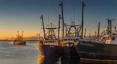 ...sunrise in New Bedford... (jamesmerecki) Tags: firstlight newbedford ma massachusetts fishingvessels vessels boats ships sunrise earlymorning colors unitedstates janeelizabeth pamelaann masts
