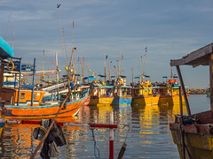 _B034592 Early morning light at the fish market in Beruwala.jpg (JorunT) Tags: speiling refleks november srilanka 2016 fiskebåter beruwala fiskemarked