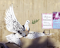 Peace in the Middle East, Please (Roaring Jellyfish) Tags: israel palestine wall border dove war peace bethlehem boundary