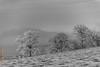 Wintermorgen (Edi Bähler) Tags: kantonbern landschaft nebel nebellandschaft rauhreif schweiz switzerland worb fog landscape nikond5 28300mmf3556