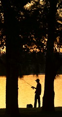 Lake Burley Griffen - Fishing (N Clifford) Tags: yellow silhouette fishing water lake sunset black fisherman rod burleygriffin canberra trees