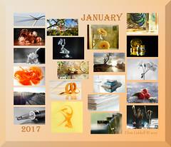January 2017 at a glance (Elisafox22 slowly beating the Shingles!) Tags: elisafox22 january 2017 collage snapshot images summary thumbnails border elisaliddell©2017