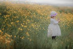 Jessie04 (michaelinvan) Tags: people portrait girl toddler child kid hat white dress spring availablelight flower yellow green richmond daylight dof canon 5d2 135mm f2 bokeh buttercup