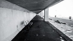 Thinking inside the box (cycletravels) Tags: seating box colums shelter sea ocean bnw monochrome path view landscape grey black white mono