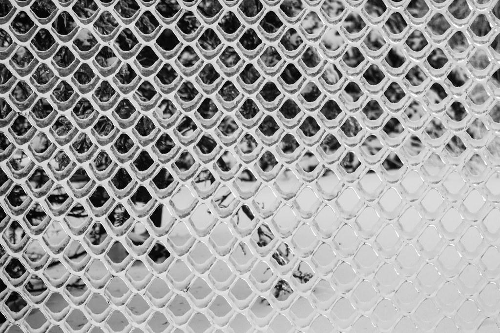 Clôture Glacée - Frozen Fence