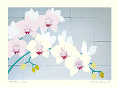 Moth orchid (Japanese Flower and Bird Art) Tags: flower moth orchid phalaenopsis orchidaceae hajime namiki modern screenprint print japan japanese art readercollection