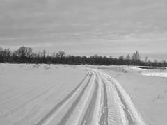 В этих дорогах, в этой зиме и есть наша эстетика..