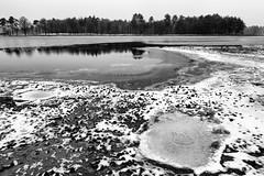 't kan vriezen - 't kan dooien (Pieter ( PPoot )) Tags: vriezen dooien bw dwingelderveld sneeuw ijs