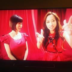 Leccaと釈由美子