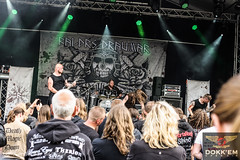 "Dokkem Open Air 2015 - 10th Anniversary  - Friday-8 • <a style=""font-size:0.8em;"" href=""http://www.flickr.com/photos/62101939@N08/18442985323/"" target=""_blank"">View on Flickr</a>"