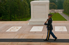 Rose Ceremony July 8, 2015 (3d U.S. Infantry Regiment (The Old Guard)) Tags: old army guard tomboftheunknownsoldier arlingtonnationalcemetary oldguard tomboftheunknownsoldiers theoldguard roseceremony tombsentinel roselayingceremony