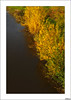 Hoy, entre dos estaciones, Entre dos aguas... (V- strom) Tags: texturas nikon naturaleza nikon2470 nikon50mm agua río otoño paisajes amarillo verde luz diagonal dedicatoria homenaje historia