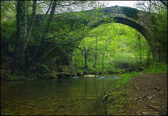 Pont medieval (antoniocamero21) Tags: pont puente medieval color foto sony paisaje rio bauma catalunya girona hostalets