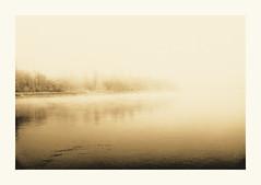 River Rhine in fog (zonevde) Tags: fuji x100t fujix100t tcl lith digitallith