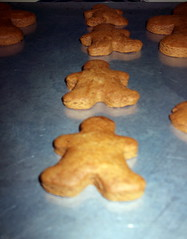 Gingerbread Cookies Fresh Out Of The Oven. (dccradio) Tags: lumberton nc northcarolina robesoncounty food eat cookies gingerbreadmen gingerbread christmascookies cooking baking