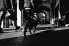 2016♠285 (ruggeroranzani_RR) Tags: digital blackandwhite leicame people dog venice ratseyeview voigtlanderultron28mmf2
