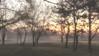 Утро в парке (kuzdra) Tags: matin lhiver lanjou angers levédesoleil parc lacdemaine утро рассвет парк зима анжу анже тумар brouillard fujifilm xt10 fujifilmxt10
