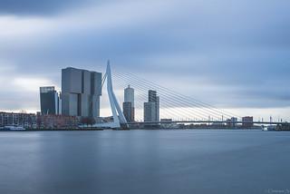 Erasmusbrug, Rotterdam. - in Explore -