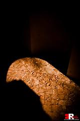 Lights & Shadows (Michele Rallo | MR PhotoArt) Tags: michele rallo mr photoart photo art photography fotografia roma rome miker flickr canon fotografo foto studio set mrphotoart emmerrephotoart villa ada project lost chaos lostinchaos luce luci ombra dark
