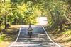 Motorbike Rider......@Wuling Farm, Taiwan.武陵農場~ (Evo-PlayLoud) Tags: canoneos550d canon550d canon 550d efs18135mmf3556 efs 18135mm 18135mmkit landscape scenery taichung taiwan green 台中 台灣 武陵農場 wulingfarm 風景 風景照 雪霸國家公園 雪霸 tree trees sunlight lightfantasy hdr sunshine lightshadows road countryroad motorcycle motorbike rider 機車 摩托車 騎士