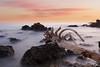 Sunrise over Sea (Domi Art Photography) Tags: sunrise sunset sun sunlight sea ocean mer rocks rock wood composition longexposure nd1000 canon antibes france frenchriviera landscape seascape sky ciel cloud clouds paysage