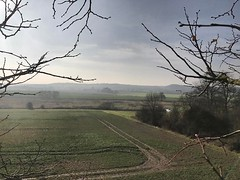 """Lovely views from today's job. Deadwooding and crown cleaning several Limes with @gavinhobson1 #wardenstreecare #treecare <a style=""""margin-left:10px; font-size:0.8em;"""" href=""""http://www.flickr.com/photos/137723818@N08/32496384930/"""" target=""""_blank"""">@flickr</a>"""