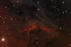 IC 5070 (The Pelican Nebula) (CSky65) Tags: star swan scope ngc pelican mount telescope nebula orion imaging nightsky ccd universe constellation milkyway cygnus nebulae deepsky ic5070 astrophotograpy lrgb qhy jimgibbs astrometrydotnet:status=solved lrhagb astrometrydotnet:id=nova1151801