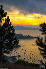 af1506_8704 (Adriana Fchter) Tags: sunset sea sky tree praia beach gua clouds mar ar celso arvore nuvem livre ceu esporte ramos onda governador arvoredo serenidade